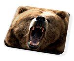 Kico Animal Coaster - Bear