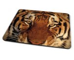 Kico Animal Placemat - Tiger Face