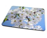 Kico Flower Placemat - White Flower