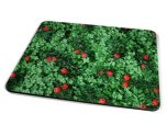 Kico Flower Placemat - Yew Tree