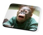 Kico Animal Coaster - Funny Monkey