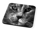 Kico Animal Coaster - Grey Cat