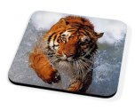 Kico Animal Coaster - Tiger In Water
