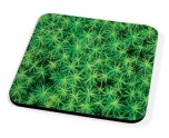 Kico Flower Coaster - Spikey Moss