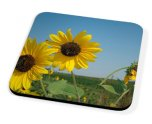 Kico Flower Coaster - Sun Flowers