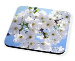 Kico Flower Coaster - White Flowers