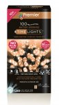 Premier Decorations Timelights™ Battery Operated Multi-Action 100 LED - Vintage Gold